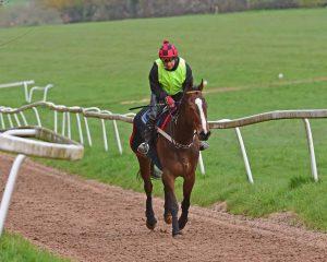 Annie no bridle on gallops